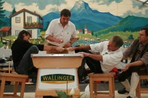 34.Alpenländische Meisterschaft (137) (500x333)