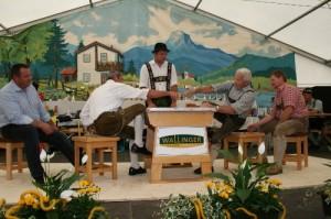 34.Alpenländische Meisterschaft (87) (500x333)