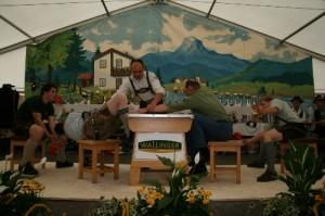 34.Alpenländische Meisterschaft (112) (500x333)