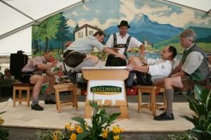 34.Alpenländische Meisterschaft (170) (500x333)