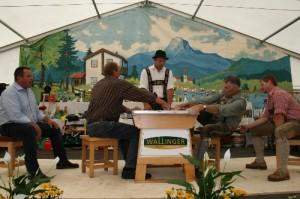 34.Alpenländische Meisterschaft (88) (500x333)