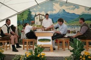 34.Alpenländische Meisterschaft (142) (500x333)
