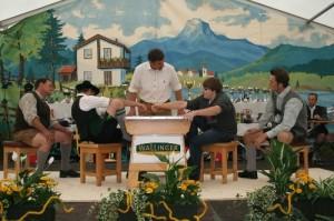 34.Alpenländische Meisterschaft (19) (500x333)