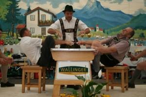 34.Alpenländische Meisterschaft (132) (500x333)