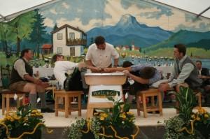 34.Alpenländische Meisterschaft (26) (500x333)